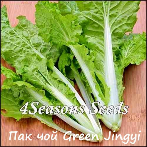 Капуста  Пак чой Green Lvxiu