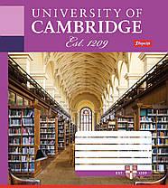 """Тетрадь 36листов """"1 Вересня"""" клетка """"Кембридж. Библиотека"""", фото 3"""