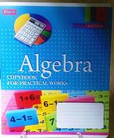"""Тетрадь 48 листов """"1 Вересня"""" клетка """"Алгебра. ColorWorld"""""""