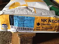 Семена подсолнечника Неома Сингента (под Евролайтинг) 2015 высокоурожайный гибрид