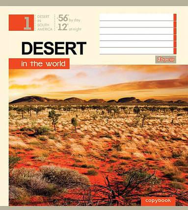"""Тетрадь 96 листов """"1 Вересня"""" клетка """"Дыхание пустыни"""", фото 2"""