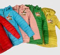 Демисезонная  куртка для девочки Колибри рр116-146
