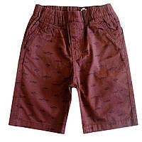 Котоновые шорты GLO-STORY для мальчика; 116, 128 размер
