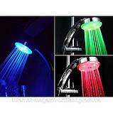 Яркая разноцветная светодиодная насадка для душа  Led Shower, фото 3