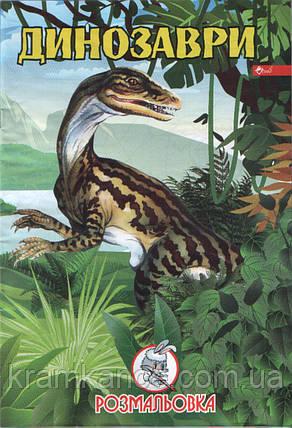 """Раскраска СКАТ УП-8 """"Динозаври"""", фото 2"""