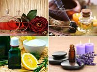 Характеристика запахів запашних рослин і речовин у Вашому ароматі ( нескладні асоціації).