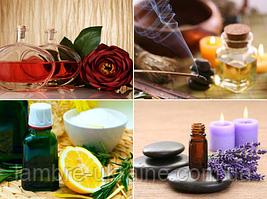 Характеристика запахов душистых растений и веществ в Вашем аромате ( несложные  ассоциации).