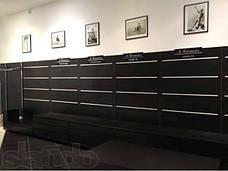 Економпанелі ( Експопанелі ) чорна 1220х1000мм , без вставок, фото 2