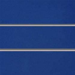 Экономпанель ( Экспопанель ) Синяя 1220х900мм, без вставок, фото 2