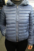 Куртка демисезонная CLASNA CW17C-115\СВ.СИНИЙ