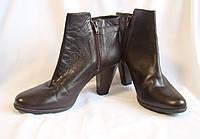 Сапоги женские демисезонные полусапожки кожаные коричневые Jones (размер 40)