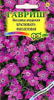 Гвоздика амурская Красновато-фиолетовая* 0,05 г сер. Альпийская горка