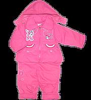 Детский весенний, осенний комбинезон (штаны на шлейках и куртка) на флисе и синтапоне, р.80, 86, 92, 98, Китай
