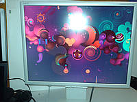 "21.3""  NEC MultiSync LCD2170NX"
