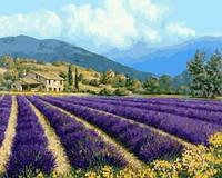 Картина для рисования по номерам Прованский пейзаж
