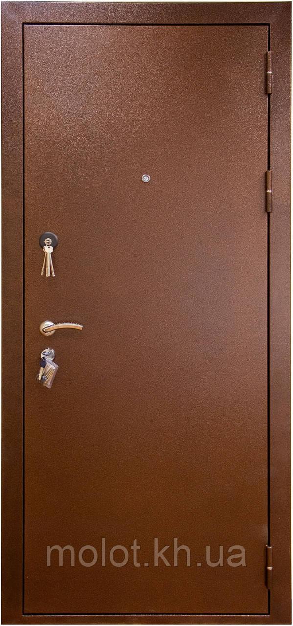 Двери входные металлические: Премиум-1