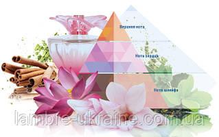 Пирамида аромата. Что это?