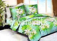 Евро двуспальный комплект постельного белья Жасмин салатовый