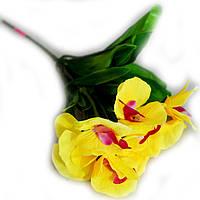 Букет Орхидея маленький