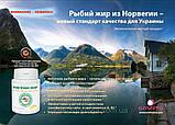 Рыбий жир – эликсир молодости, природное средство регулирования метаболических процессов., фото 2
