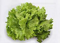 Салат Афицион 5 грамм