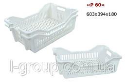 Ящик пластиковий 600х400х180, Італія