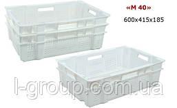 Ящик пластиковий 600х415х185, Італія