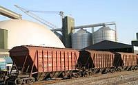 Предложение свободных зерновозов - последние данные