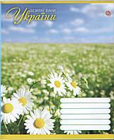 Тетрадь 12 листов ЗОШИТ УКРАЇНИ косая линия