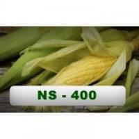 Семена кукурузы НС-400 ( Нертус ) 2014г.