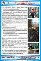 Стенд «Охрана труда при чокеровке и трелевке древесины тракторами»