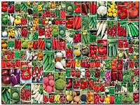 Семена, насіння