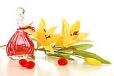 Как классифицируются ароматы в области применения.