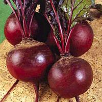 Семена свеклы Детройт 2, от 100 г, Agri Saaten