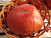 Томат сорт Рожевий Велетень, 0,2 г