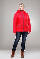 Куртка демисезонная женская стеганная большие размеры М-325 красная