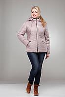 Куртка демисезонная женская стеганная большие размеры М-325 капуччино