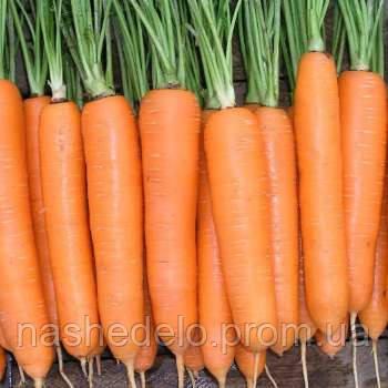 Боливар 100 000 сем. морковь 1,4- 1,6  Тезье ВЛАДАМ