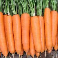 Семена моркови Боливар F1 100 000 сем. 1.4 -1.6  Clause