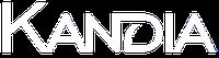 Кандия - Хирургическое оборудование, инструменты и расходные материалы.