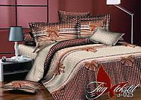 Постельное белье из сатина евро Комплект постельного белья S025