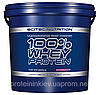 100% Whey Protein Scitec Nutrition 5000 грамм