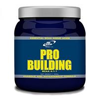 Pro Building ВСАА 4:1:1 Pro Nutrition 500 грамм