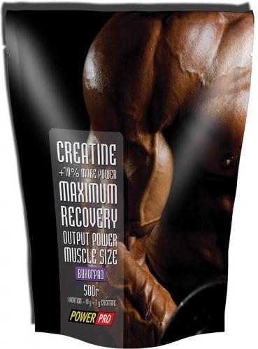 Креатин Power Pro - Creatine Maximum Recovery (500 грамм)  mojito/мохито