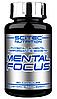 Mental Focus Scitec Nutrition 90 caps.