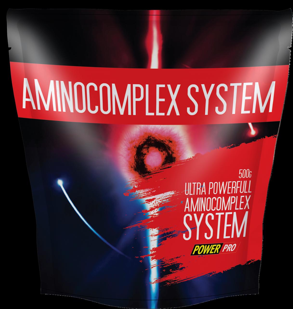 Комплекс аминокислот Power Pro - Amino Complex System (500 грамм) клюква