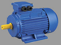 ПАО «Электромашина» оказывает услуги по ремонту асинхронных электродвигателей