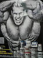 BPI Плакат Jay Cutler большой 59,4*84,1 см