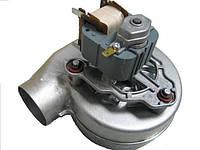 Вентилятор для котла Protherm Гепард v19 0020098002