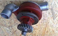 Насос водяной Т-130, Т-170 (помпа Д-160) 16-08-140СП